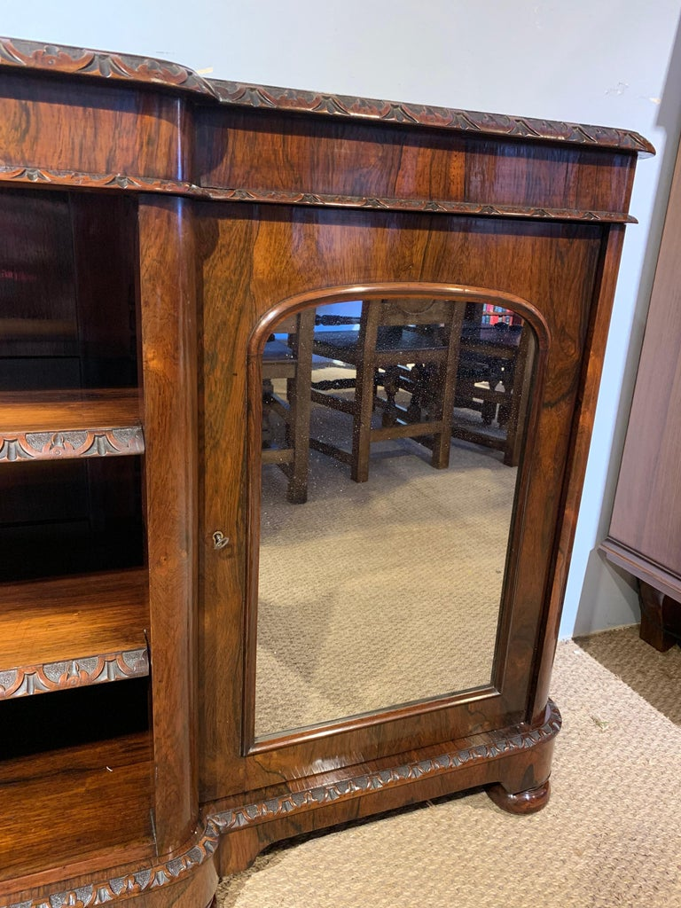 Mid-19th Century Bookcase Long and Low For Sale