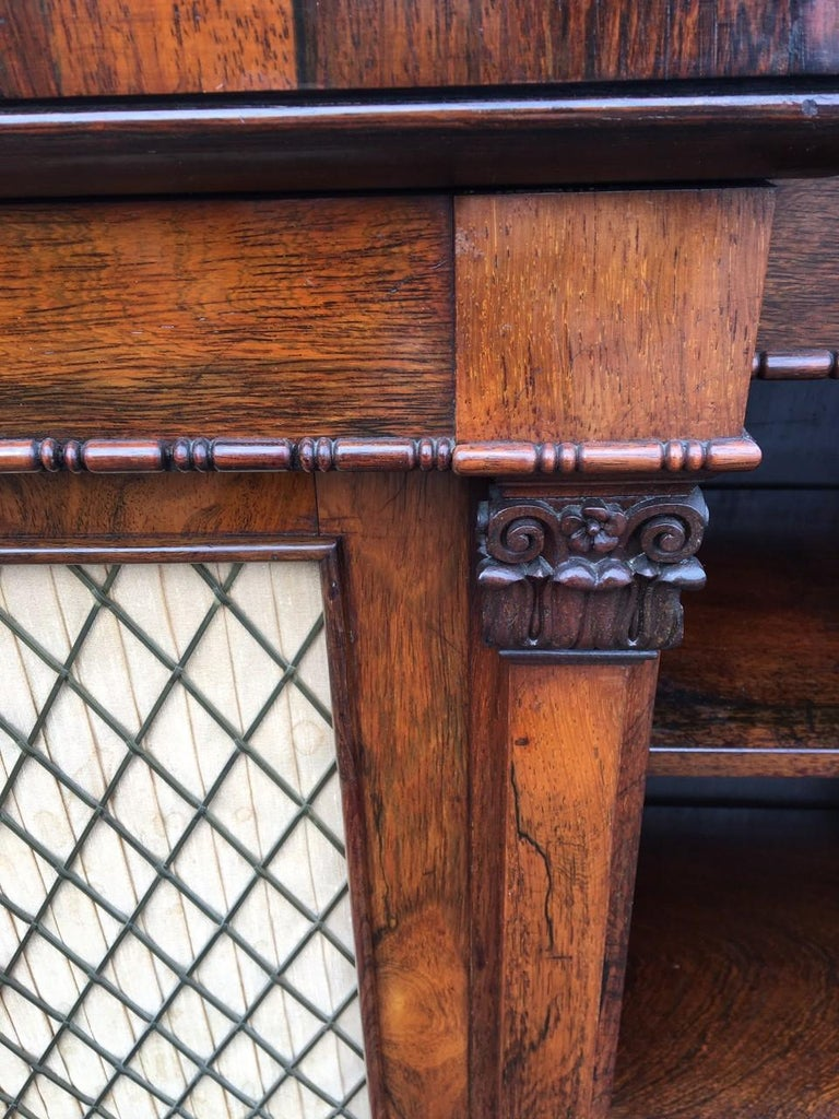 Bookcase Regency, English, Rosewood, Early 19th Century In Good Condition For Sale In Honiton, Devon