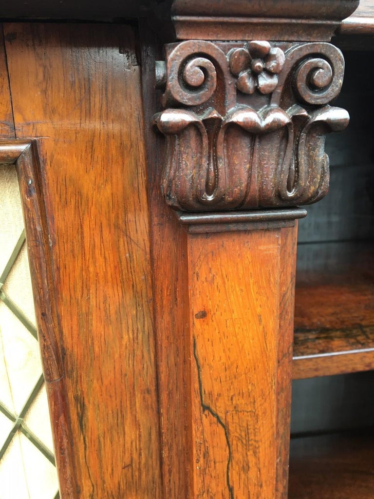 Bookcase Regency, English, Rosewood, Early 19th Century For Sale 5