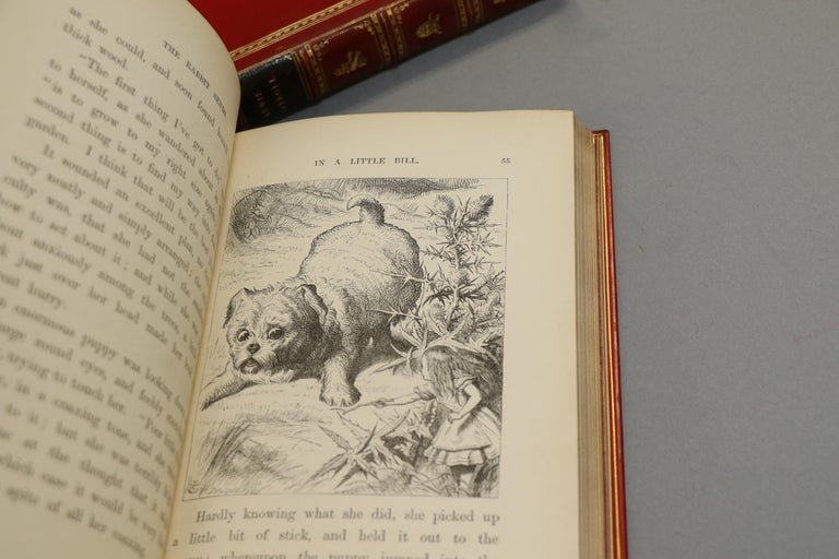 Late 19th Century Books, Lewis Carroll's 'Alice in Wonderland' & 'Through the Looking Glass' For Sale