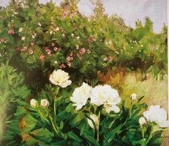 """White Peonies"" Oil cm. 70 x 60 1980"