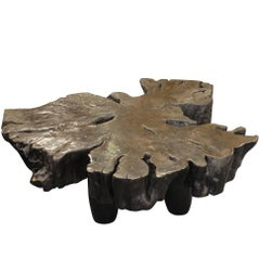 Borneo Lychee Wood Free Form Coffee Table, Prehistoric, Malaysia
