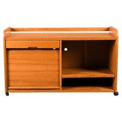 Bornholm Mobelfabrik Mid Century Mobile Teak Stereo Cabinet