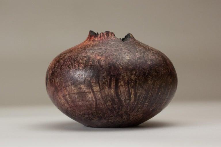 Modern Boxelder Burl Hollow Form by Vlad Droz For Sale
