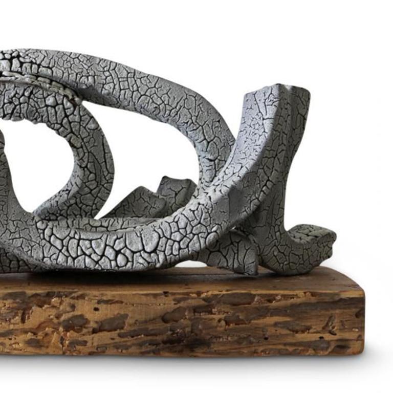 Hoop on Birch - Sculpture by Brandon Reese