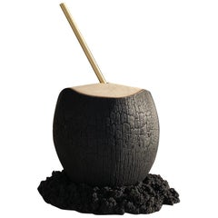 """Brasa"" Contemporary Sculpture Coconut by Marcos Amato, Limited Edition"