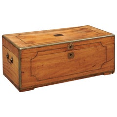 Brass Banded Camphor Wood Trunk, 19th Century England