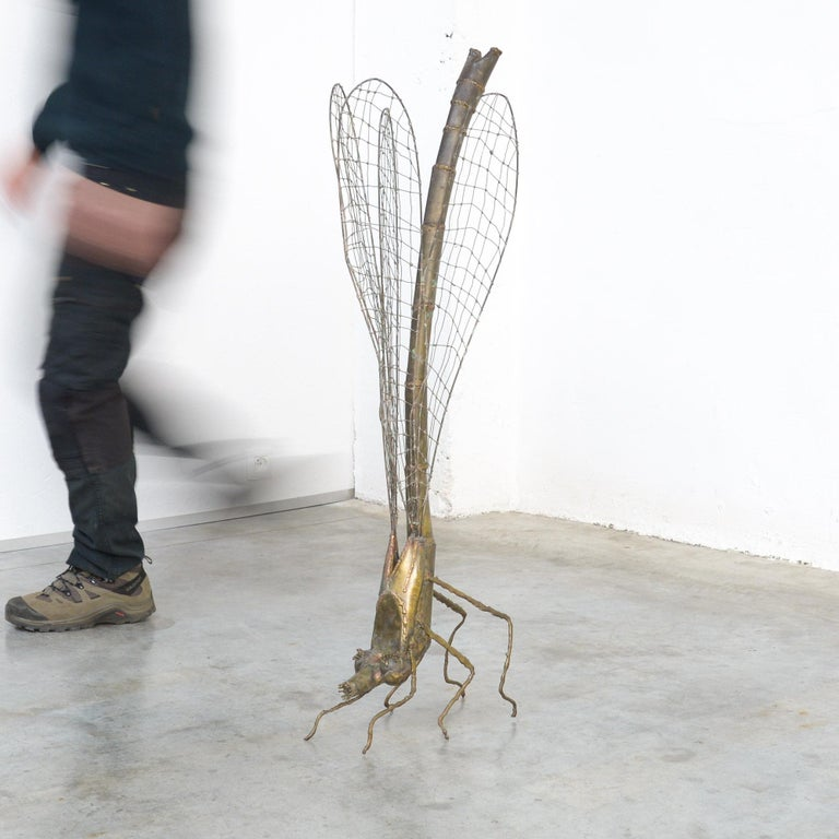 Modern Brass Dragonfly Sculpture by Daniel Dhaeseleer For Sale