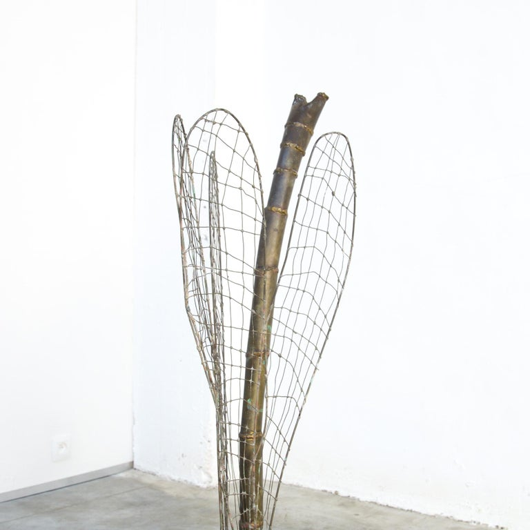 Patinated Brass Dragonfly Sculpture by Daniel Dhaeseleer For Sale