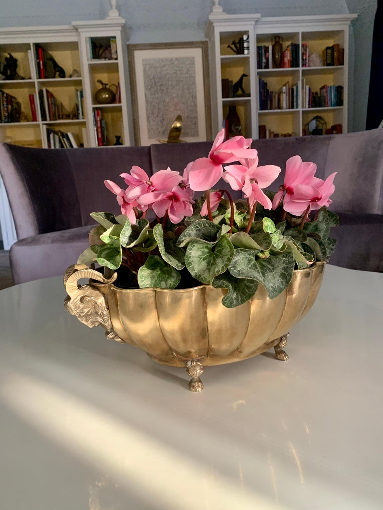 Brass jardinière with ram's head handles and paw feet, a large oval structure with bowed ribbing. A wonderful for fresh flowers, potted plants and a remarkable centerpiece.  Additionally it is a nice catch-all for everything from mail to love