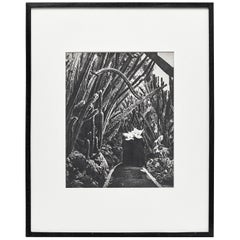 Brassaï, Black and White Photogravure, 1979