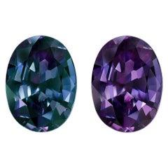 Brazil Alexandrite Ring Gem 5.34 Carat Loose Unset Gemstone
