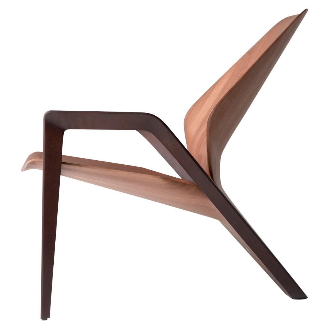 Contemporary Ava Armchair in Wood by Guto Indio da Costa, Brazil