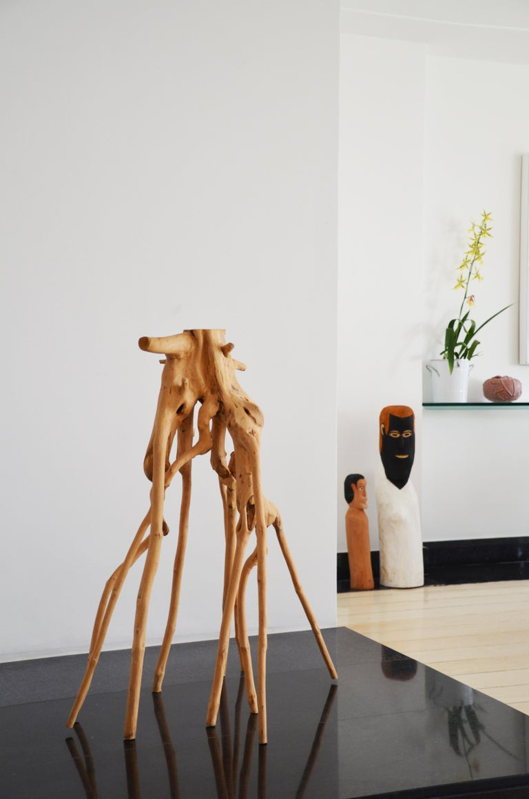 Contemporary Brazilian Hand-Carved Wood Sculpture Roots For Sale