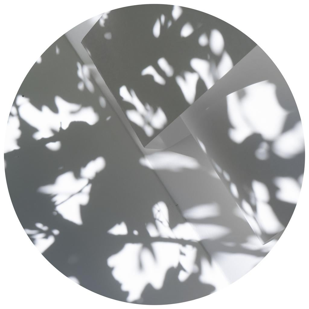 Shadow Legacy no. 18 - Abstract gray & white shadow floral snow circle landscape