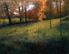 Godfrey Meadow