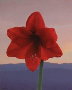 Love Letter to Colorado