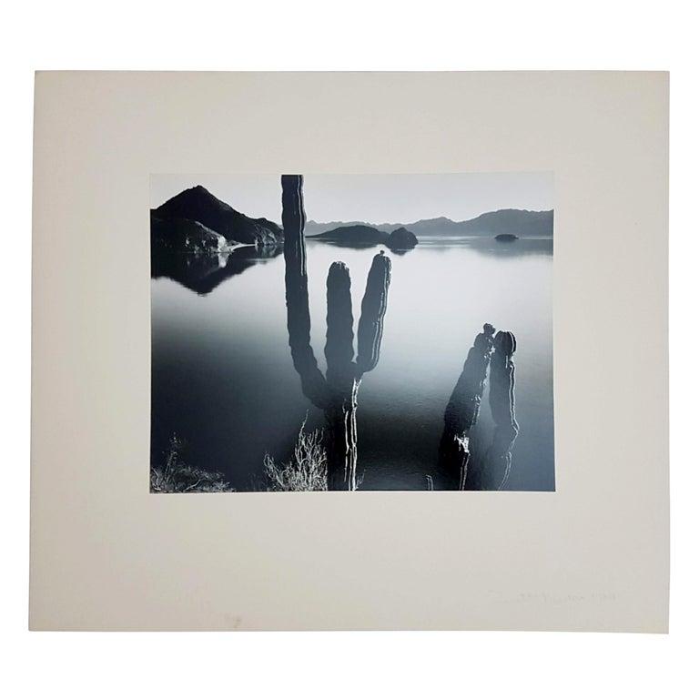 Brett Weston, Baja California, Portfolio with 15 Photographs For Sale 5