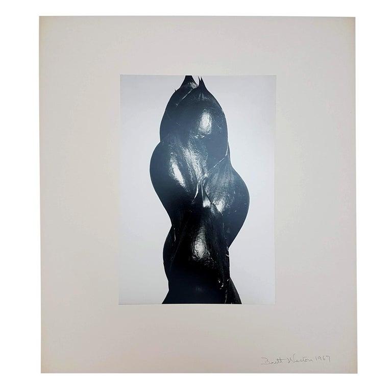 Brett Weston, Baja California, Portfolio with 15 Photographs For Sale 11