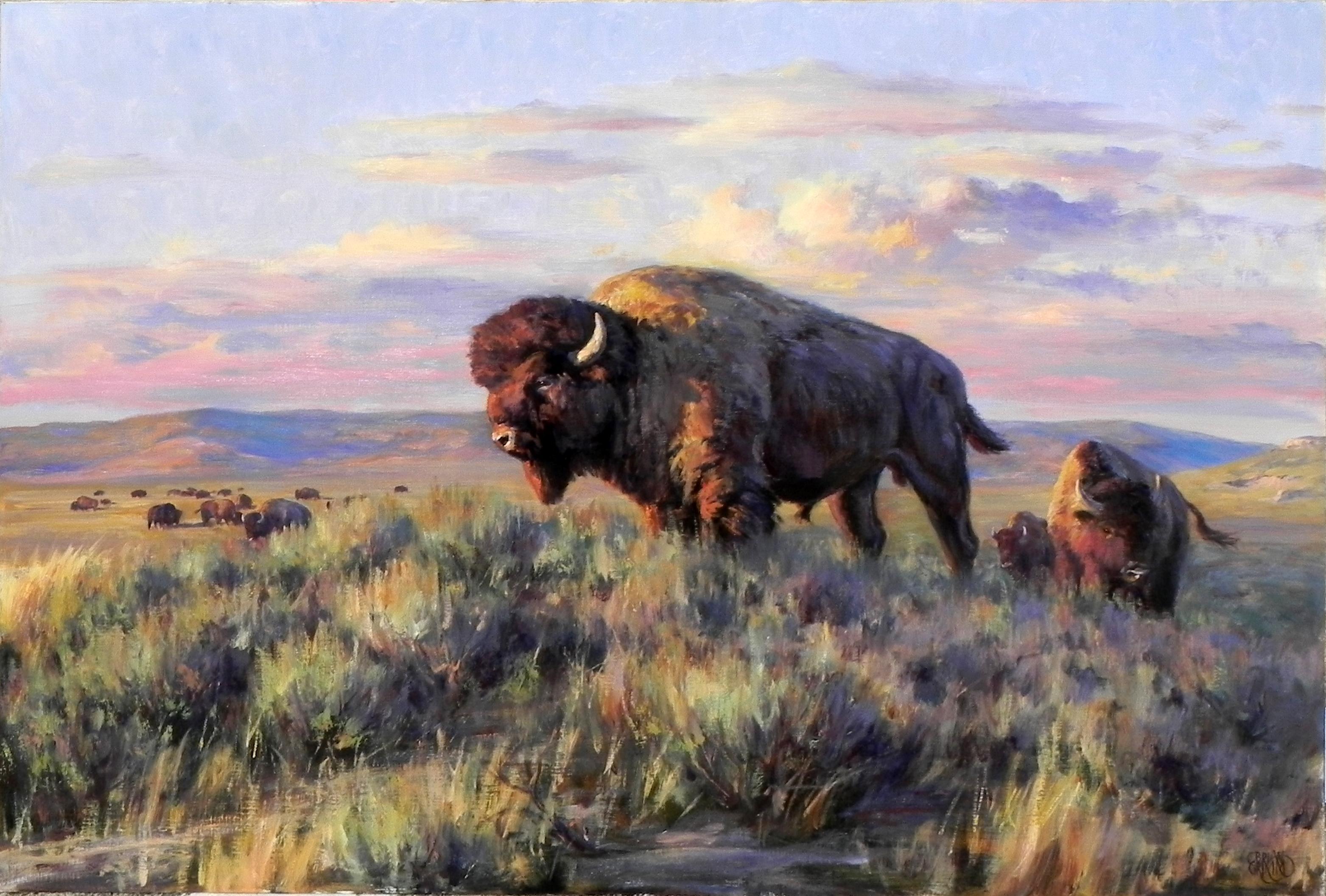 """Looking West"", Brian Grimm, Oil on Canvas, 30x40 in, Buffalo, Western Landscape"
