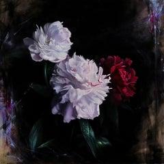 """Transcendence,"" Oil Painting"