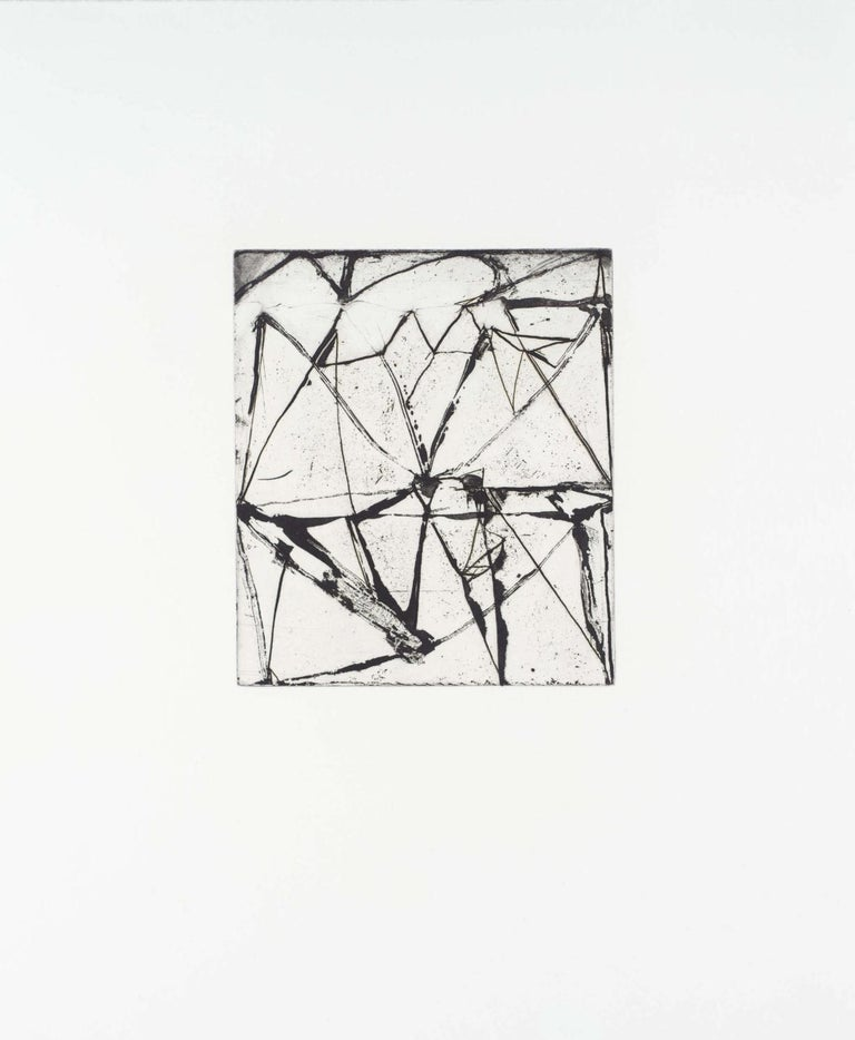 Brice Marden, Etchings to Rexroth #24, 1986, etching and sugarlift aquatint - Print by Brice Marden