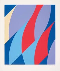 Large Fragment -- Screen Print, Abstract Art, Op Art by Bridget RIley