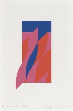 One Small Step -- Screenprint, Abstract Art, Op Art by Bridget Riley