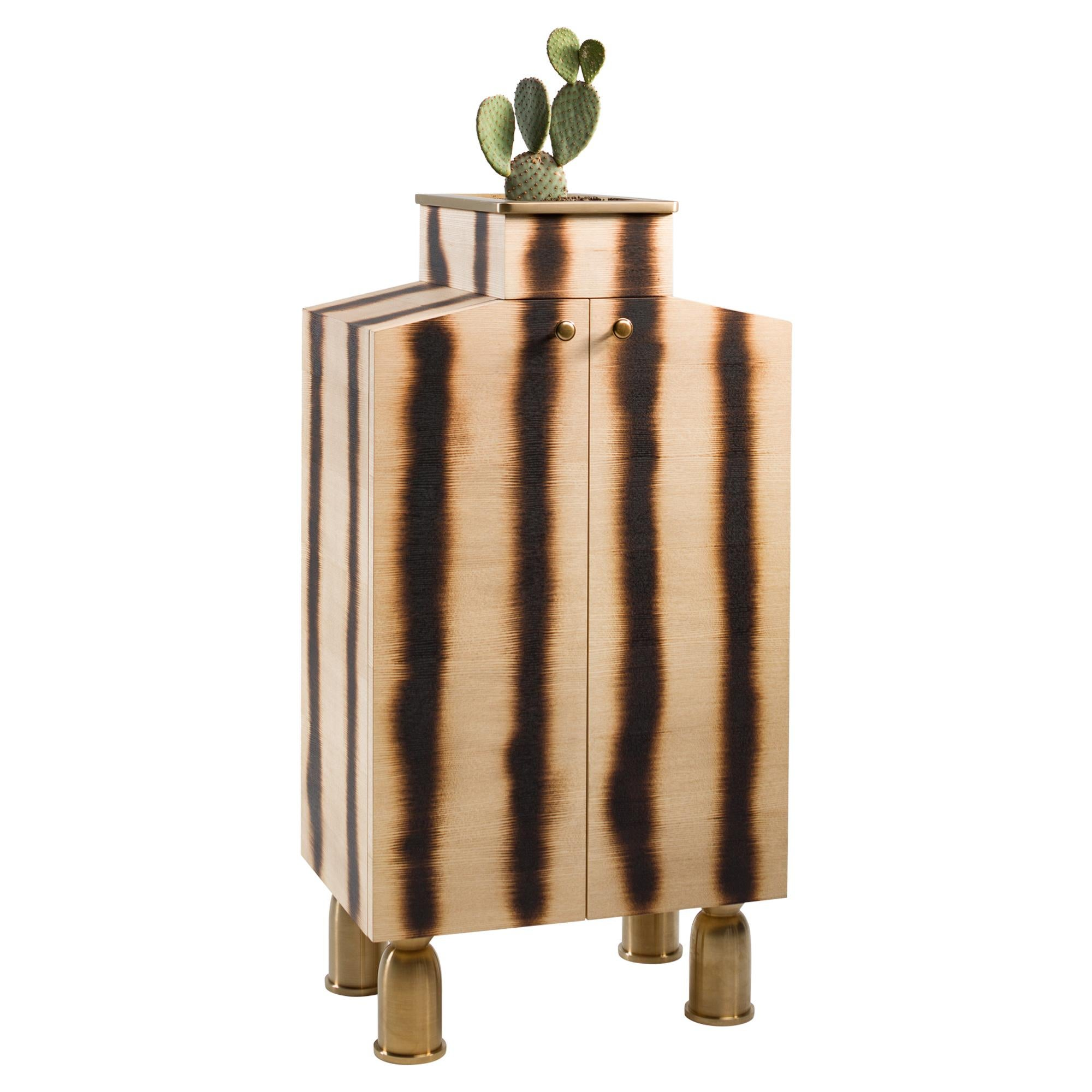 Bright Plywood Cabinet with Brass Legs, Bugs Collection