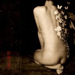 Brigitte Carnochan, Butterflies Tell Me, 2010