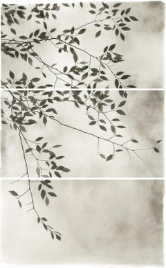 Brigitte Carnochan, Late Leaves III, Platinum palladium print, 2012