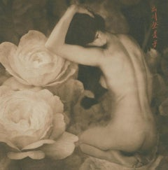 Brigitte Carnochan, Pillow of Sickness, 2010