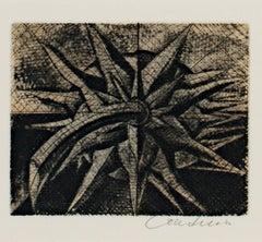 """Plant Form,"" Original Botanical Black & White Etching by Bridgette Coudrain"
