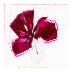 I was ten years old once – Brigitte Lustenberger, Flower, Still Life, Colour