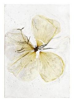 I wonder if it hurts – Brigitte Lustenberger, Flower, Still Life, Colors, Nature