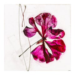 Is there nothing after – Brigitte Lustenberger, Flower, Still Life, Colour