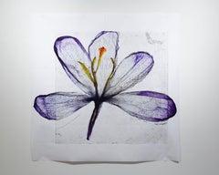 We passed the setting sun, Collage – Brigitte Lustenberger, Collage, Flower, Art