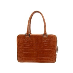 Brioni Brown Alligator Square Handbag