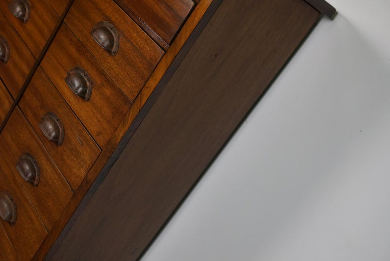 British Mahogany Apothecary Cabinet or Bank of Drawers, 1930s For Sale 5