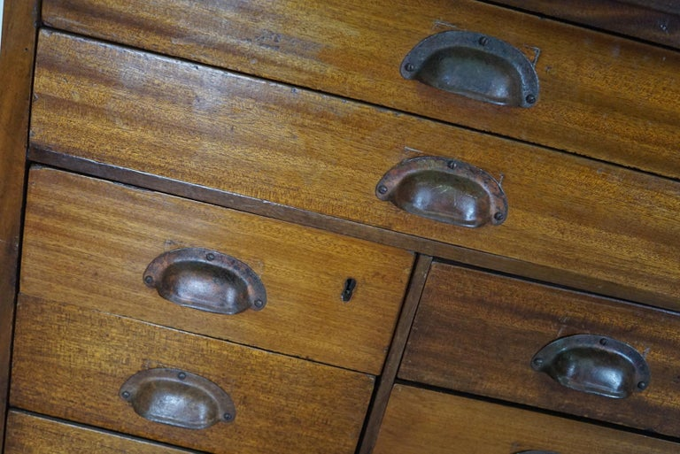British Mahogany Apothecary Cabinet or Bank of Drawers, 1930s For Sale 7