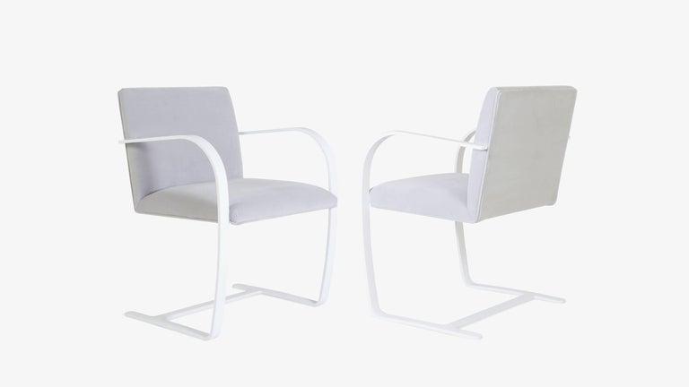 Mid-Century Modern Brno Flat-Bar Chairs in Dove Velvet, Lunar Gloss Frame For Sale