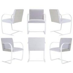 Brno Flat-Bar Chairs in Dove Velvet, Lunar Gloss Frame, Set of Six
