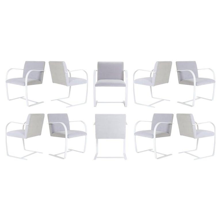 Brno Flat-Bar Chairs in Dove Velvet, Lunar Gloss Frame, Set of Ten For Sale