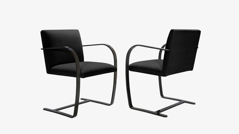 Mid-Century Modern Brno Flat-Bar Chairs in Noir Velvet, Obsidian Gloss Frame, Set of Six For Sale