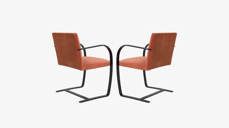 Mid-Century Modern Brno Flat-Bar Chairs in Rust Velvet, Obsidian Matte Frame, Set of Six For Sale