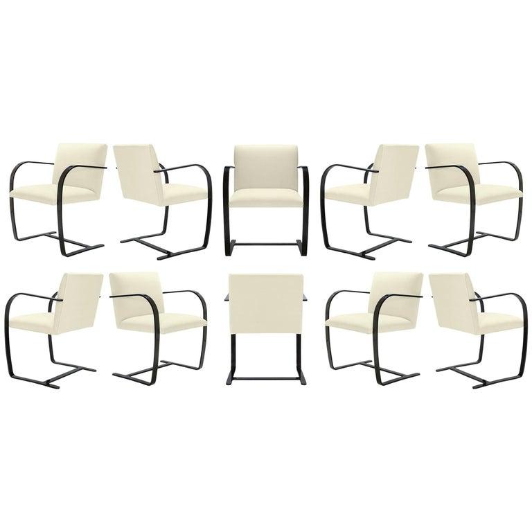 Brno Flat-Bar Chairs in Snow Velvet, Obsidian Gloss Frame, Set of Ten For Sale