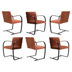 Brno Flat-Bar Chairs Velvet, Obsidian Matte by Mies van der Rohe for Knoll, 6