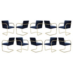 Brno Tubular Chairs in Navy Velvet, Polished Brass, Set of 10