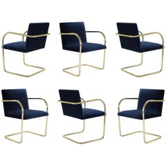 Brno Tubular Chairs in Velvet Polished Brass by Mies van der Rohe for Knoll, 6
