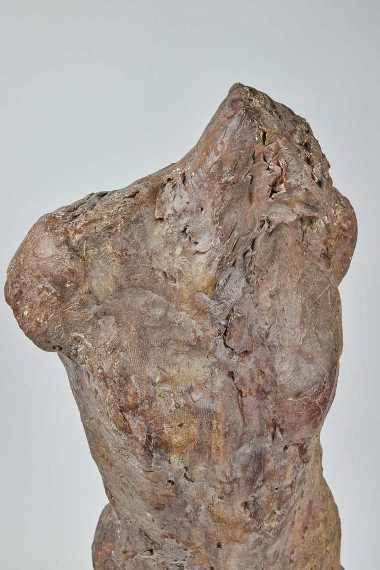 Bronze and Plaster Nude Male Sculpture For Sale 1